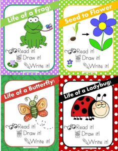 Frog Life Cycle & Frog Facts Worksheets. from mzat on ...