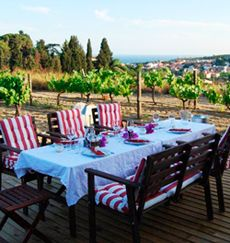 Can you imagine enjoying a picnic amidst beautiful vineyards with breathtaking sea views in the town center of Alella? Now you can. This sensational offer, from the Bouquet d'Alella winery, can be enjoyed by everyone: …