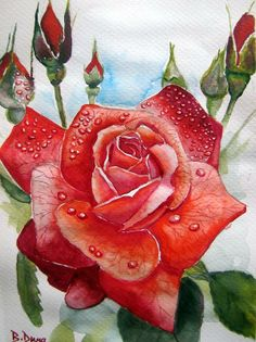 Rose, painted by Berrin Duma