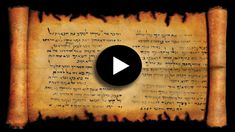 Content from Bible Movie The Son Of Man, Son Of God, The Bible Movie, Mary And Martha, Tower Of Babel, Fall From Grace, John The Baptist, Gods Plan, New Testament
