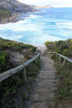 ocean walk to the sea