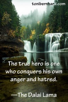 """""""The true hero is one who conquers his own anger and hatred."""" —The Dalai Lama"""