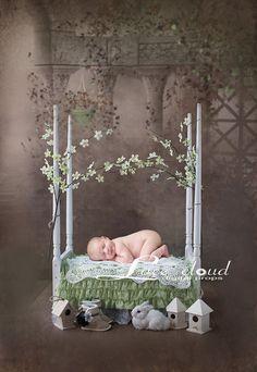 Digital backdrop background newborn baby girl by LaceCloudStudio