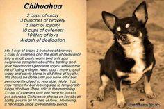 Chihuahua Recipe