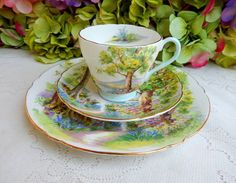 SHELLEY ~ Woodland Bone China, Cup And Saucer, Tea Time, Woodland, Tea Cups, Plates, Tableware, Pretty, Beautiful