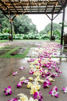 A dazzling, colorful touch to an elegant wedding ceremony, the orchids lining the aisle truly complete this wedding aesthetic. A little drizzle couldn't stand against these beautiful flowers and twinkling lights.  #weddingaisle #weddingaisleinspo #floweraisle #weddingvenue #hawaiiweddingvenue Wedding Photo Gallery, Wedding Photos, Wedding Ceremony, Wedding Venues, Twinkle Lights, Hawaii Wedding, Big Island, Elegant Wedding, Real Weddings