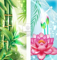 Vertical banners with bamboo and lotus Stock Photo