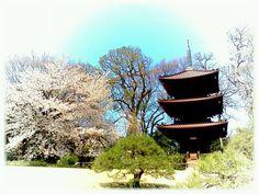 A pagoda, Tokyo, Japan.