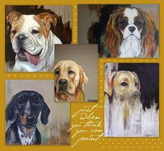 I'm smitten with Heather LaHaise Pet Portraits!