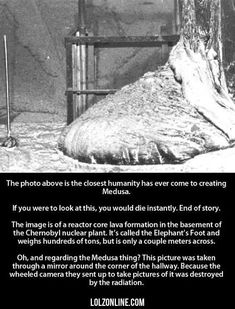 If You Were To Look At This, You Would Die Instant#funny #lol #lolzonline #NuclearReactors