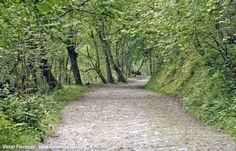 Valle del Río Infierno y Espinaredo http://www.fotoescapada.com/valle-del-rio-infierno-y-espinaredo-asturias/