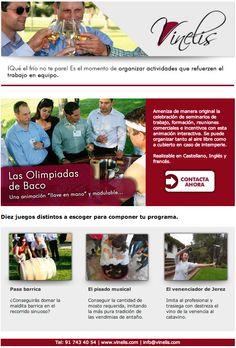 Diseño de la Newsletter para Vinelis