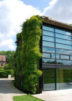 Green walls/roofs= effective way to make buildings seem unobtrusive + soften scape.