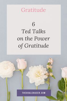 6 Ted Talks On The Power Of Gratitude