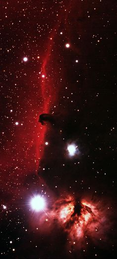 The Horsehead Nebula complex in Orion