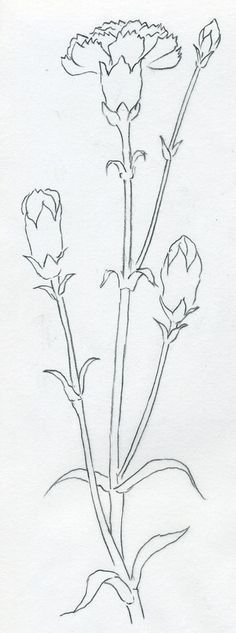 Image result for how to draw a flower
