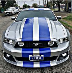 This literally the exact mustang I want to own and pass it through my family for lifetimes to come