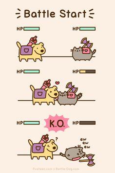 Pusheen battles dog