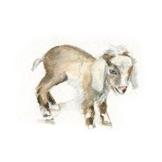 Watercolor Baby Goat, Baby Goat Print, Baby Goat Art, Farm Animal Art, Nursery Art  I am happy to offer my original art and fine art prints. All