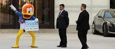 WASHINGTON, DC - 12 de septiembre: Un manifestante llevaba un traje de pato Donald bailes en frente del Trump International Hotel durante el primer día del hotel de Asunto 12 de septiembre de, 2016, Washington, DC.  La Organización Trump se le concedió un contrato de arrendamiento de 60 años para el histórico Old Post Office por el gobierno federal antes de Trump anunció su intención de postularse para presidente.  El hotel cuenta con 263 habitaciones de lujo, incluyendo el 6,300 pies…