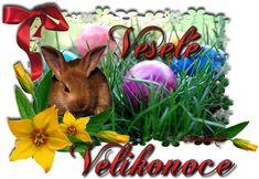 Veselé Velikonoce obrázky, citáty a animace pro Facebook - ObrazkyAnimace.cz Happy Easter, Plants, Beautiful, Facebook, Twitter, Amazing, Sweet, Happy Easter Day, Candy