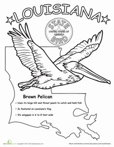 louisiana wordsearch crossword puzzle and more louisiana coloring pages and coloring. Black Bedroom Furniture Sets. Home Design Ideas