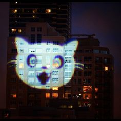 lolcats cats projected