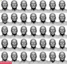 6ab4e342f03d049e5b5248cb92e50993--facial-anatomy-d-anatomy.jpg (736×698)