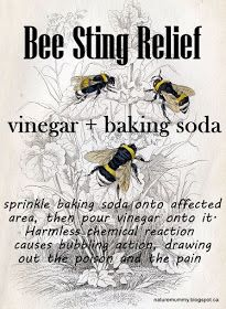Bee sting remedy