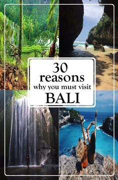 reasons to visit bali