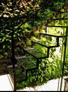 A glass staircase and living wall in Patrick Veillets Paris studio. Designed by Vertical Gardens Patrick Blanc. Interior Exterior, Exterior Design, Exterior Stairs, Interior Garden, Wall Exterior, Outdoor Spaces, Outdoor Living, Indoor Living Wall, Glass Stairs