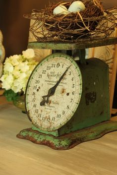 Scale chippy rusty green scale - and nest! Is there anything that doesn't look cute on an old scale?chippy rusty green scale - and nest! Is there anything that doesn't look cute on an old scale? Antique Decor, Vintage Decor, Vintage Antiques, Antique Interior, Antique Wood, Shabby Vintage, Shabby Chic Pink, Farmhouse Style, Farmhouse Decor