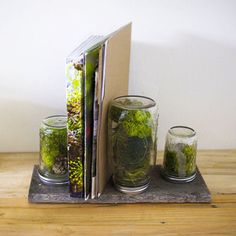DIY Nature Office Organizer Tutorial:  http://myhoneysplace.com/more-the-best-only-diy-projects/