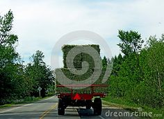 Taking a tractor-load of bales of hay to the barn.