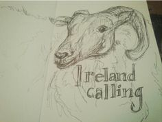 Yesterday's post inspired @caoinfae to do a sketch which she was nice enough to send to me. Can we give her a like?