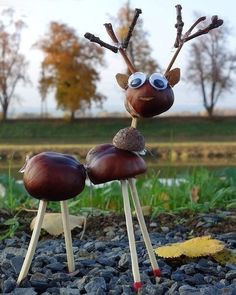 Basteln mit Kastanien Crafts with chestnuts Cheap Fall Crafts For Kids, Easy Fall Crafts, Diy For Kids, Kids Crafts, Diy And Crafts, Acorn Crafts, Pine Cone Crafts, Conkers Craft, Halloween Crafts