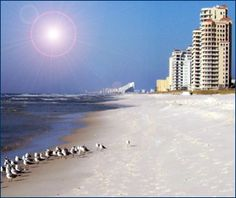 Perdido Key, FL. Lived here for a year! I miss it SO much. Such a beautiful place.