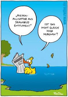 Die 18 besten Bilder von Witzige Cartoons   Fanny pics, Funny ...