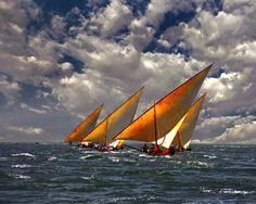 The Art of Swahili Dhow Racing II - Lamu Archipelago, Kenya