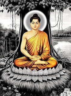 324 best lord buddha