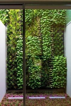 "vertical garden  optical recession vs protrusion creates variety. Differing textures/""color"". Value."