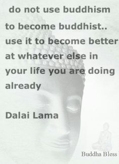 I find myself becoming exasperated whenever I have to sit and listen to my family say that I am not Buddhist or its not working because I drop a curse word or I say something that isn't 'go meditate and drink tea without a single thought in the world'.... This quote really speaks to me.