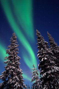 Aurora – Northern lights in Lapland, Finaland.