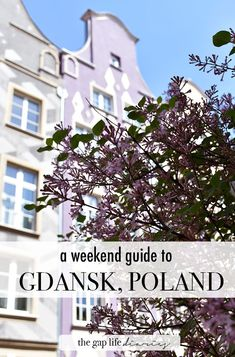 The Gap Life Diaries | Gdańsk: A perfect weekend on Poland's Baltic Coast