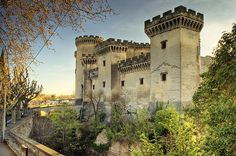 Château de Tarascon ~ Provence ~ Alpes cote d'Azur ~ Bouches du Rhone ~ France
