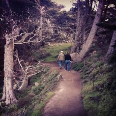 Point Lobos near Carmel, California...  Beautiful hiking trails to share with friends.  China Cove is gorgeous, but be sure to climb up the cliff before the tide comes in!  LOL