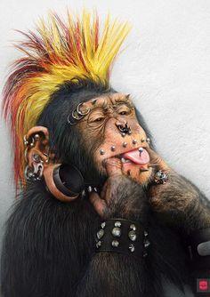 «Funny Monkeys» by Yulia Malanina, via Behance