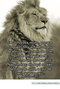 Apocalipse 5:5-4 Jesus o Leão da tribo de Judá á raiz de Davi que estava morto mas hoje VIVE para todo sempre amém .: