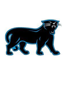 Carolina Panthers 5 Wallpaper