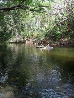 Puerto Rico reserva natural